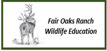 Fair Oaks Wildlife Education